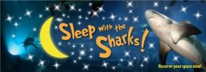 Sleep-With-the-Sharks-Middlebox2